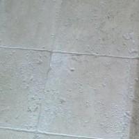 Средства для защиты тротуарной и другой строительной плитки: варианты от Telakka